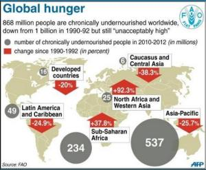 Global hunger graphic to 2012