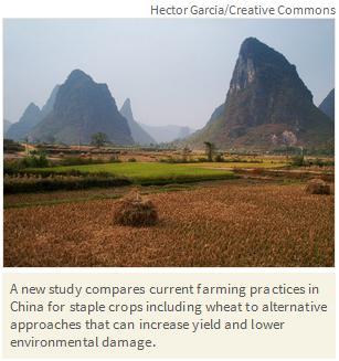 ds china study