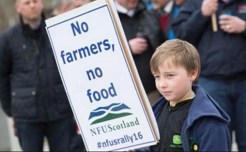 fdf scots demo